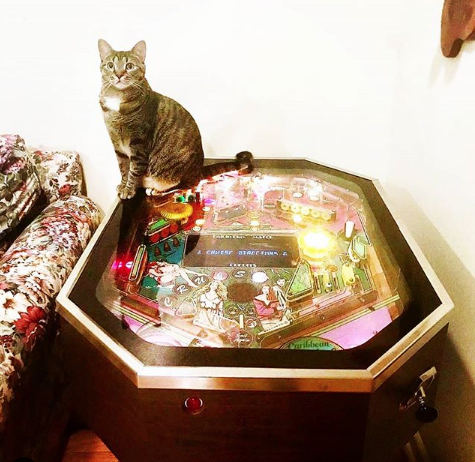 Carribean Cruise Pinball Machine For Sale Cocktail